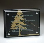 Black Glass Plaque with Glass Layer Sales Awards